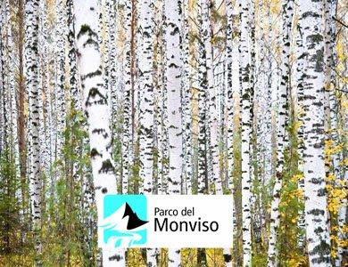 Riconoscimento specie arboree ed arbustive ed ecologia degli habitat forestali
