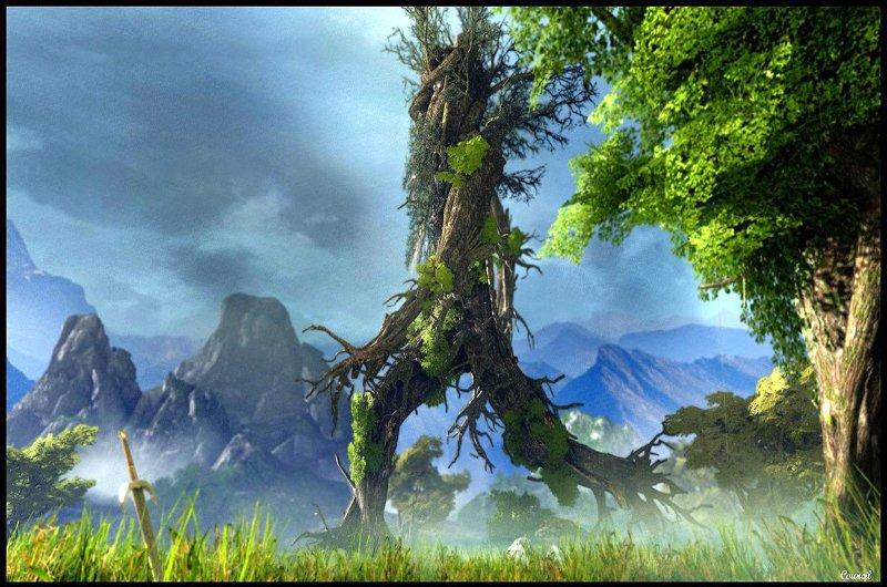"""Alla ricerca del """"vecchio albero"""" – attività per famiglie – Val Pellice (TO)"""